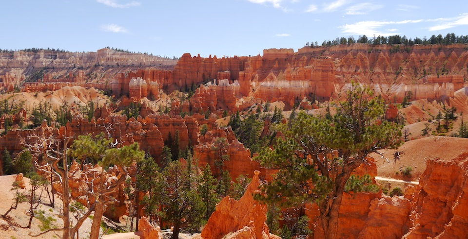 Bryce Canyon, wide view